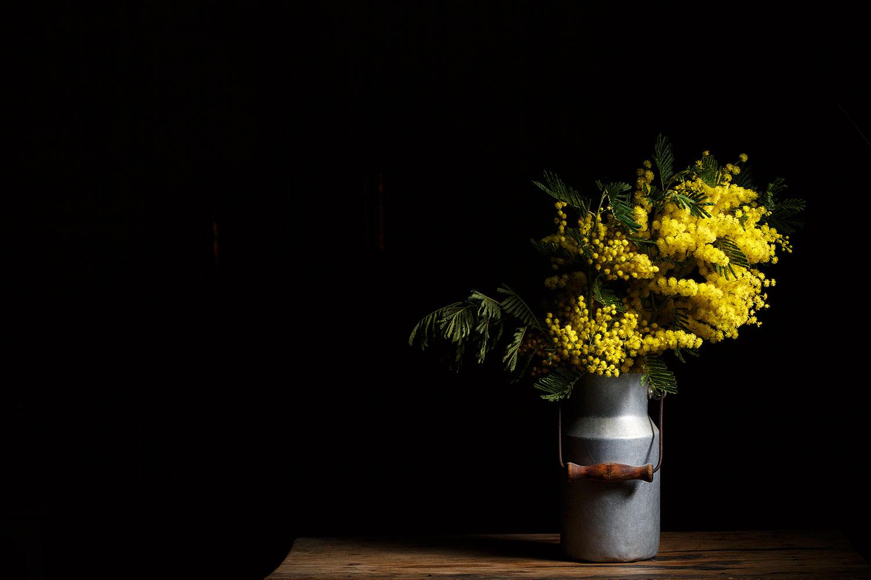 mimosas9412HD